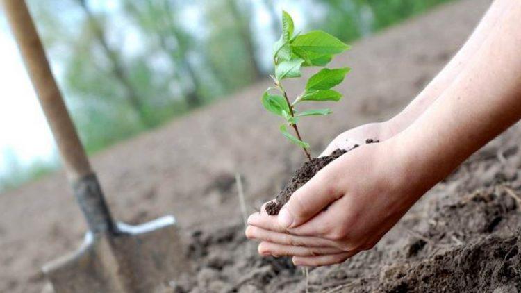 Fathul Qorib Ihya Al Mawat : Mengolah Bumi Yang Mati